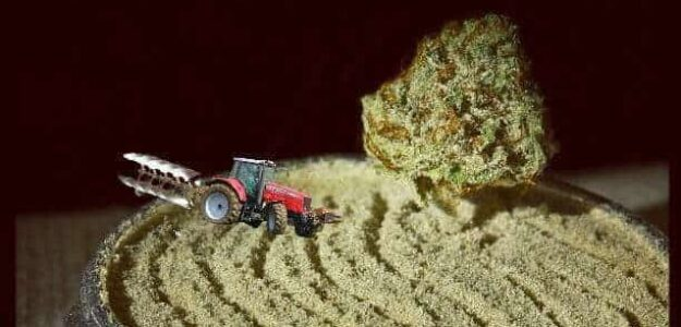 Farm Grow