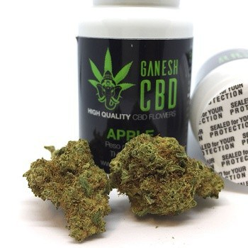 Cannabis Apple Pie legale