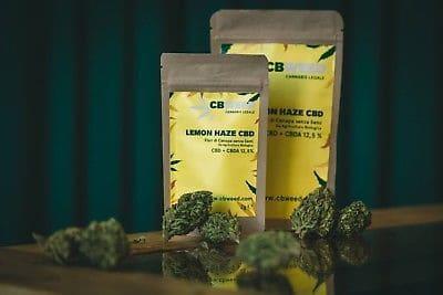 Lemon Haze CBD: caratteristiche e dove comprare